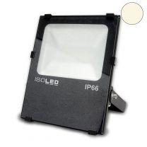 LED Fluter PRO50, prismatisch, 50W, warmweiß, anthrazit, IP66