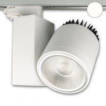 3-PH Schienen-Strahler fokussierbar, 30W, 30°-50°, weiß matt, ne