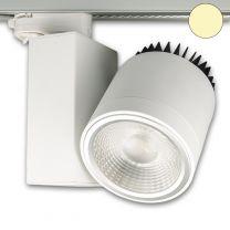 3-PH Schienen-Strahler fokussierbar, 30W, 30°-50°, weiß matt, wa
